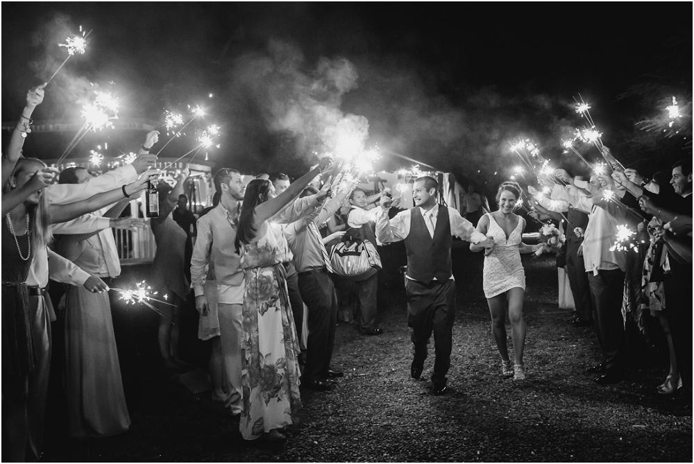 Keswick Vineyard Charlottesville Wedding Richmond Virginia Wedding Photographer Virginia Wedding_0280