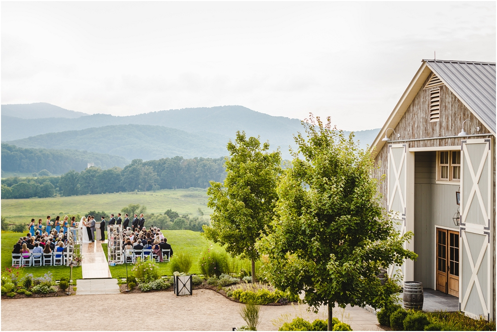 Pippin Hill Farm and Vineyard Wedding Charlottesville Wedding Richmond Virginia Wedding Photographer Virginia Wedding_0179