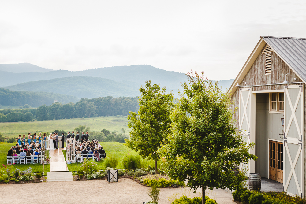 Pippin Hill Farm Wedding Charlottesville Virginia Wedding photographers-