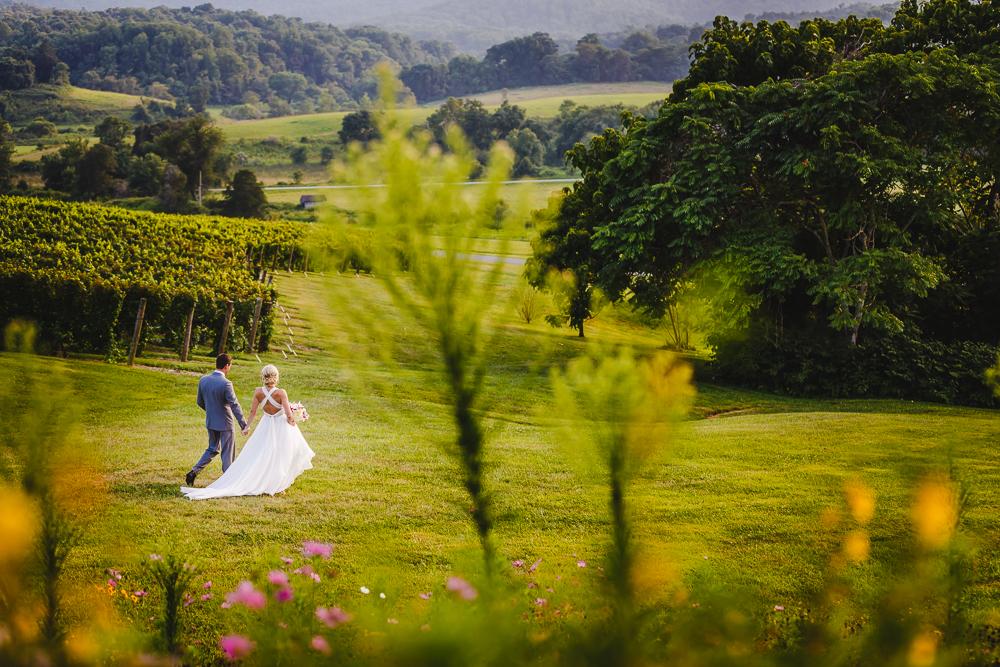 Pippin Hill Farm Wedding Charlottesville Virginia Wedding photographers-7273