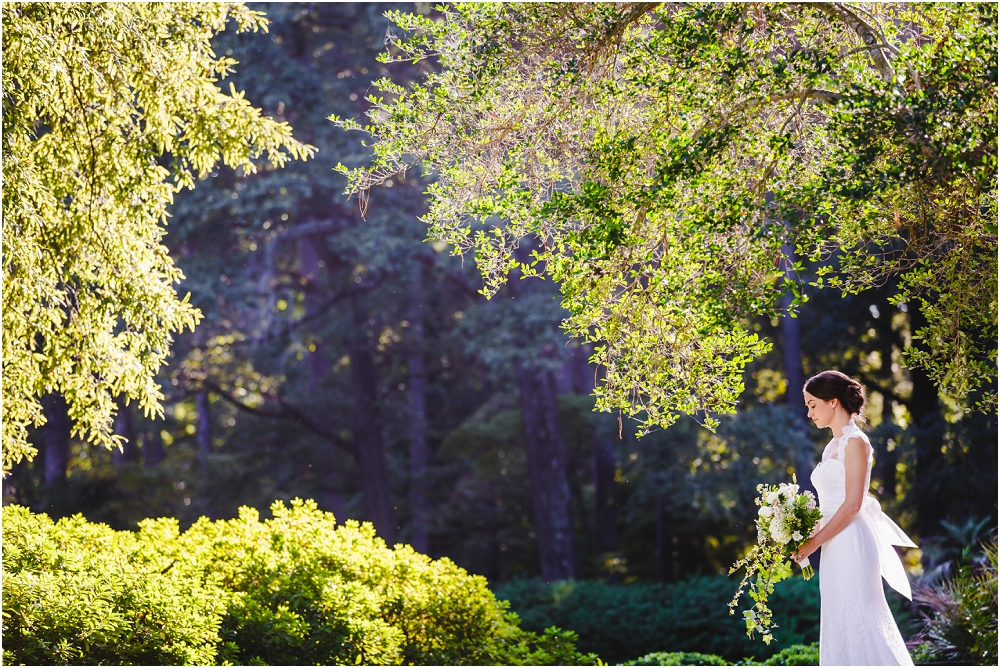 Norfolk Botanical Gardens Bridal Session Virginia Wedding Photographer  Virginia Wedding_0542 ...