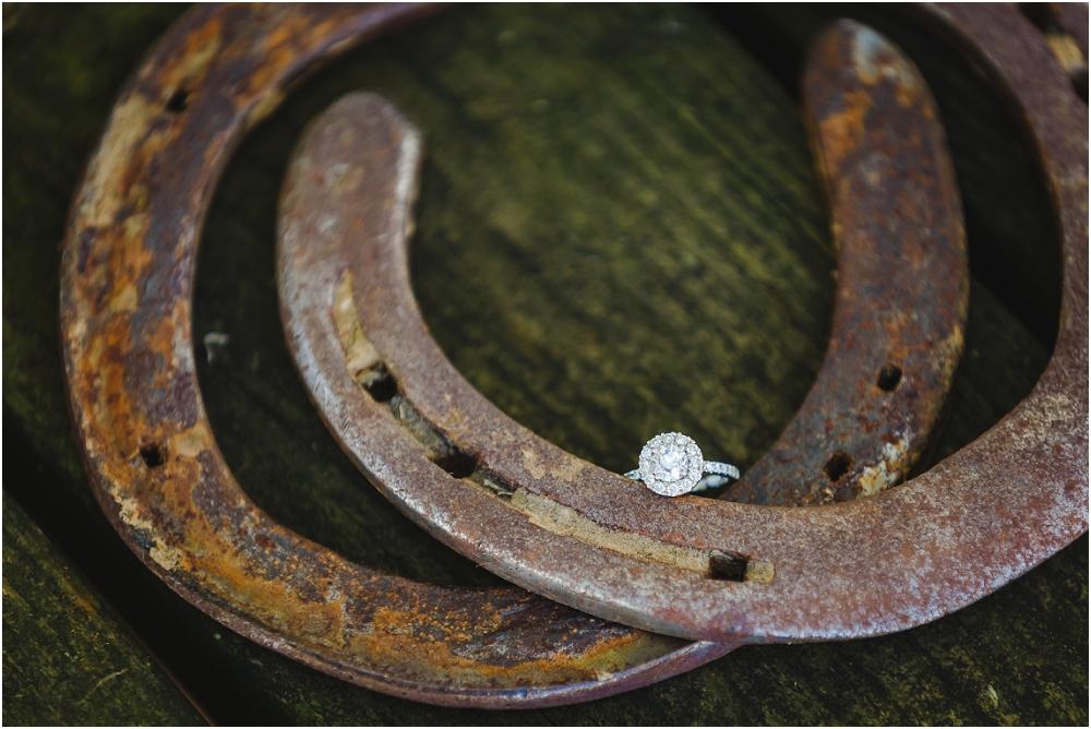 Horse Engagement Maryland Richmond Wedding Photographers_0158