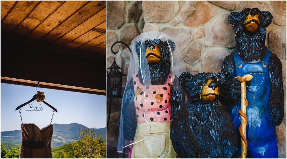 House Mountain Inn Wedding Lexington Richmond Virginia Wedding Photographer Virginia Wedding_0446